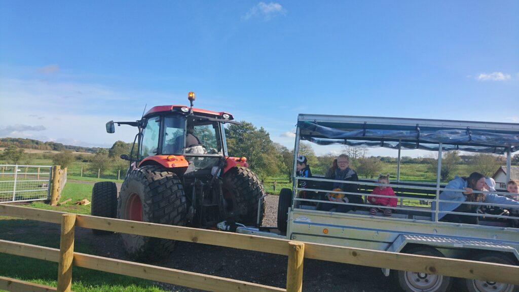 Amerton Farm