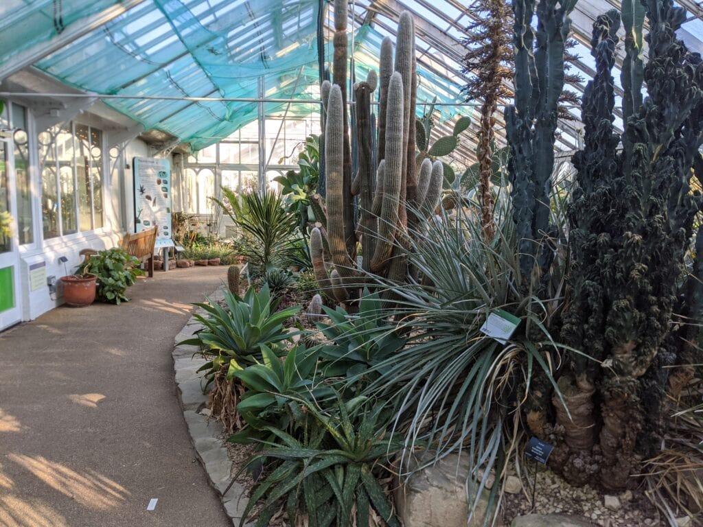 Featured image for Birmingham Botanical Gardens