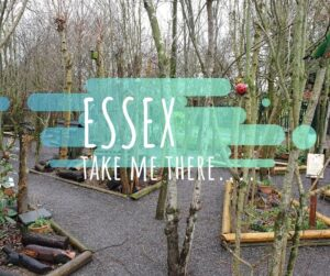 Things to do Essex