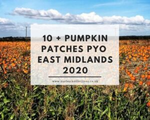 10 + Pumpkin Patches PYO East Midlands 2020