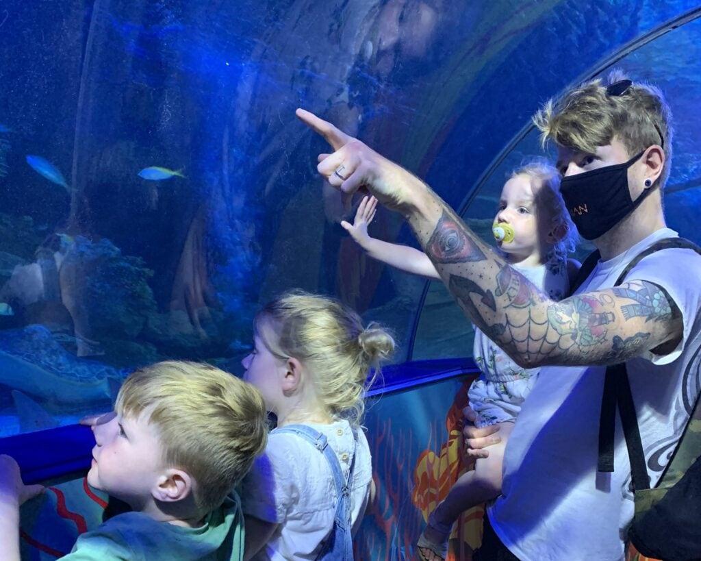 Sea Life Centre Weymouth