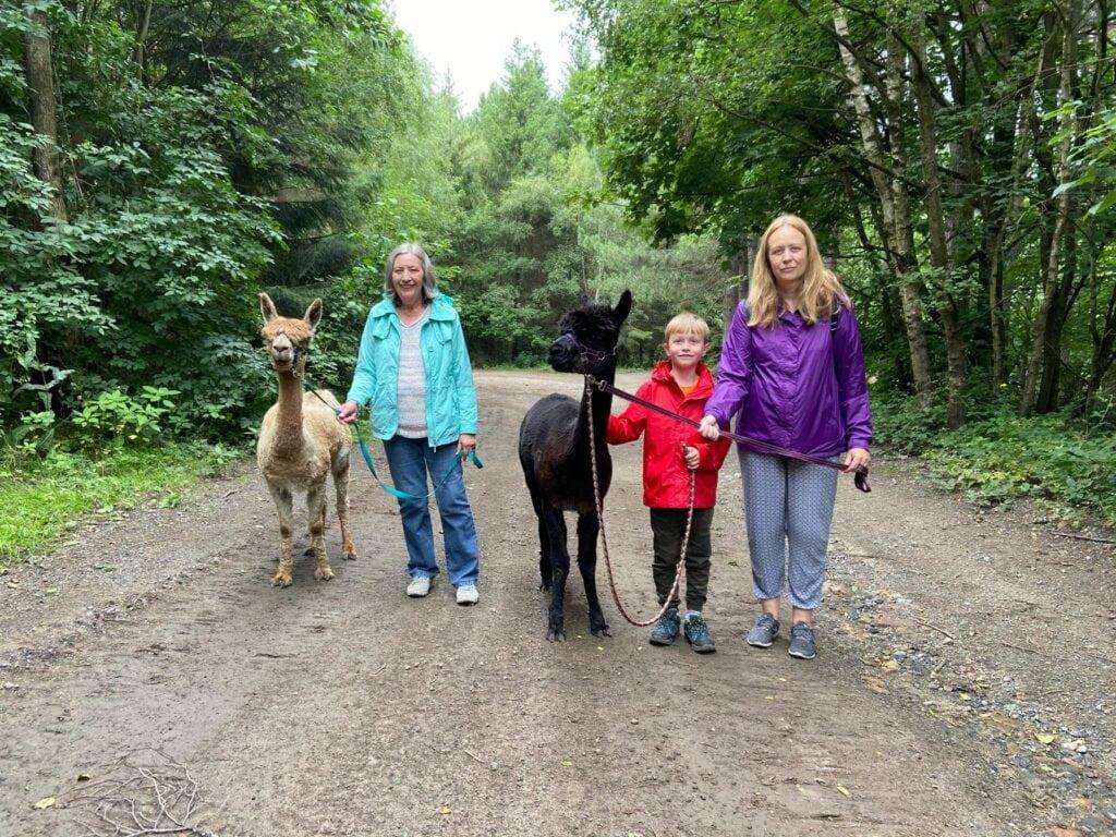 Featured image for Posey Pacas Alpacas