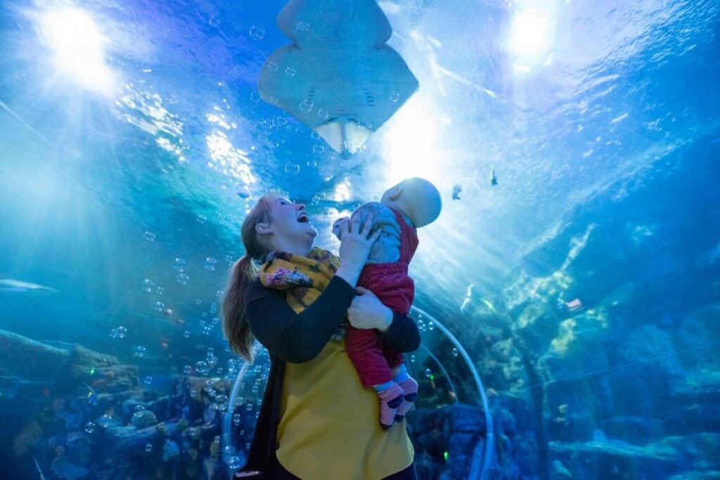 National Sea Life Centre Birmingham