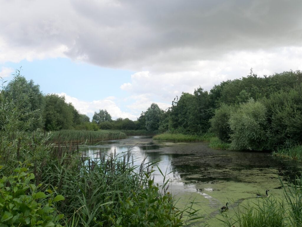 Water's Edge Country Park