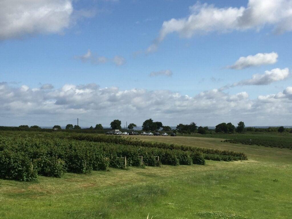 Scaddows Farm