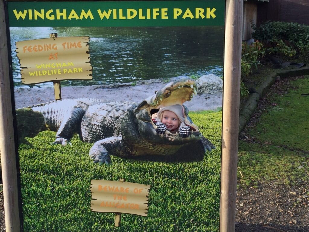 Wingham Wildlife Park
