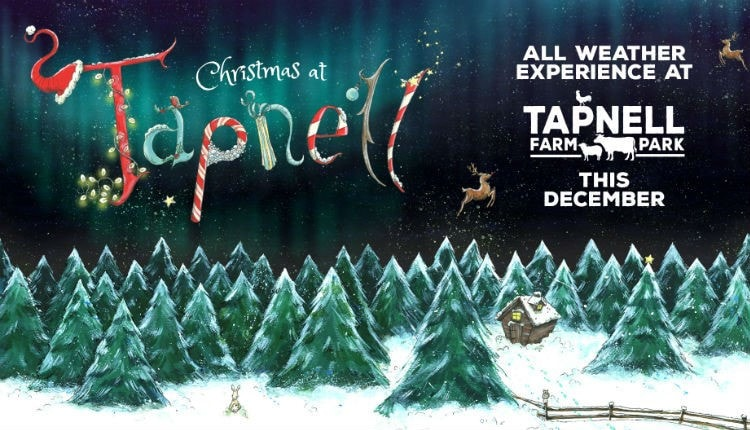 `Best Christmas Events Isle of Wight 2020