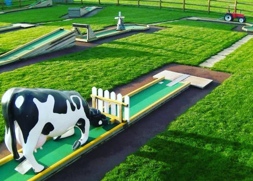 Daisy Made Farm