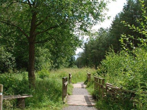 Thumbnail for Chambers Farm Wood
