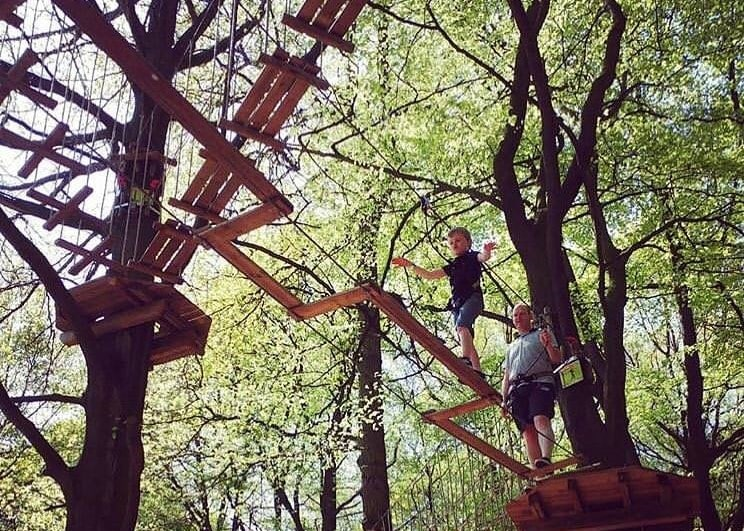 Featured image for Go Ape Normanby Hall