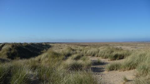 Saltfleetby Theddlethorpe Dunes National Nature Reserve