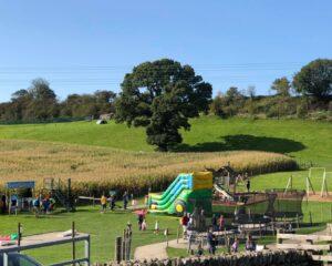 Lakeland Maze Farm Park