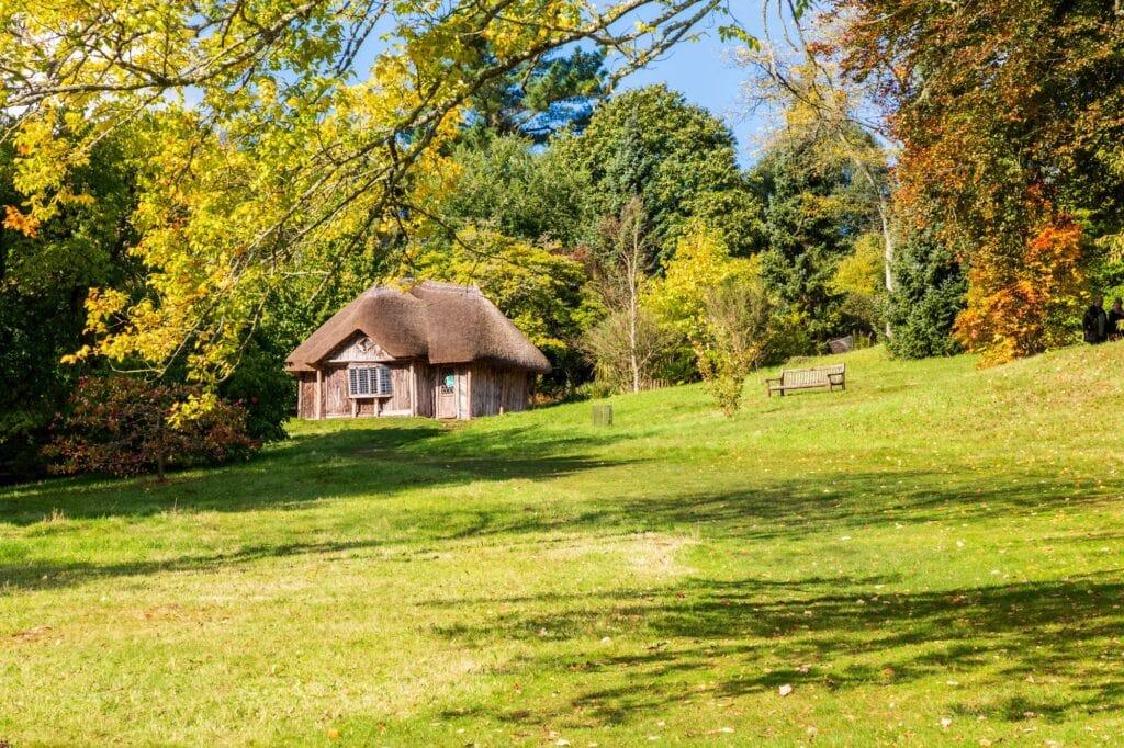 Thumbnail for Killerton House National Trust