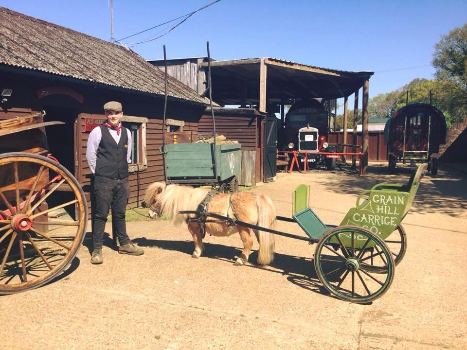 Featured image for Dorset Heavy Horse Farm