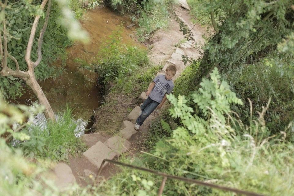 The Crocky Trail