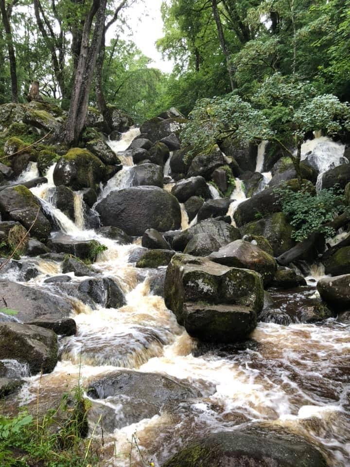 Thumbnail for Becky Falls Ancient Woodland Park