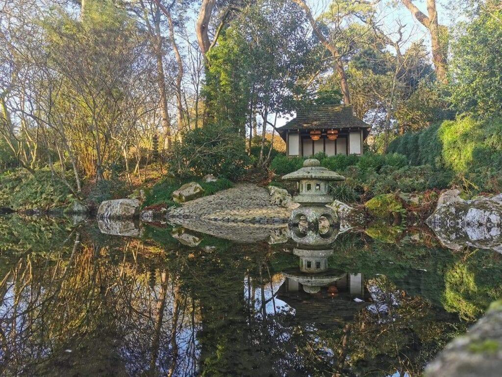 Thumbnail for Pinetum Gardens