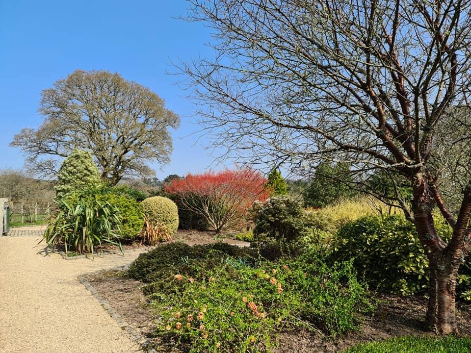 Pinetum Gardens