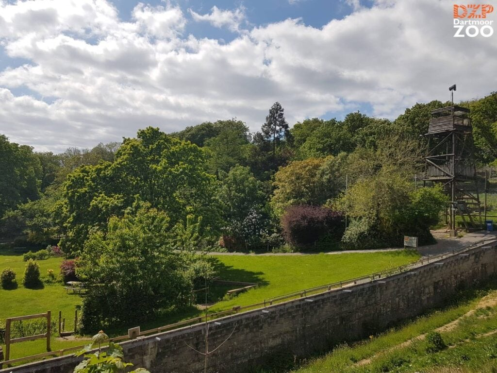 Dartmoor Zoological Park