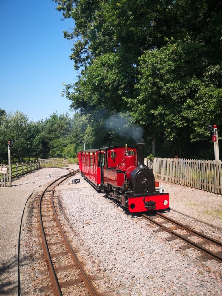 Featured image for Perrygrove Railway and Treetop Adventure