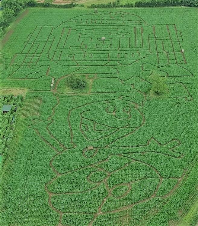 Elton Giant Mazes and Activities Maze