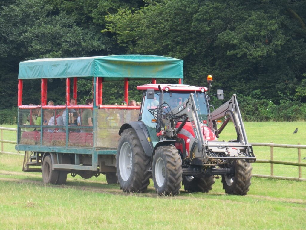 Thumbnail for Longdown Activity Farm