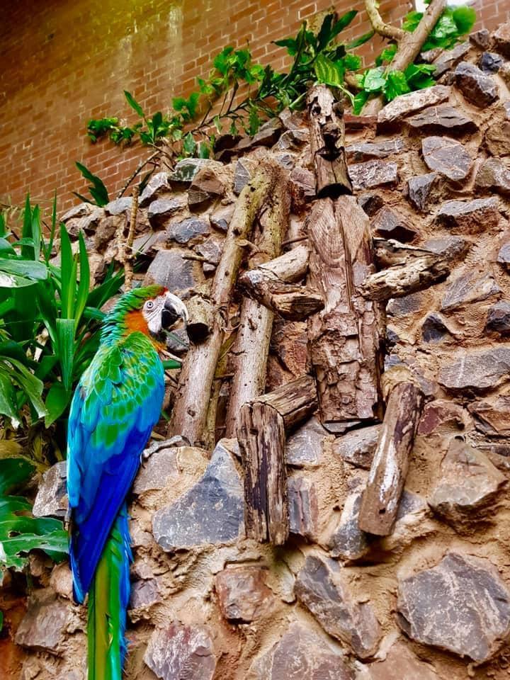 Tropiquaria Wildlife Park