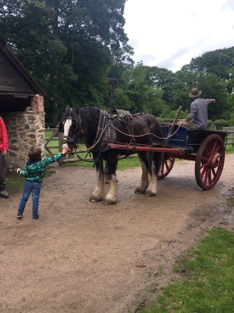 Acton Scott Historic Working Farm
