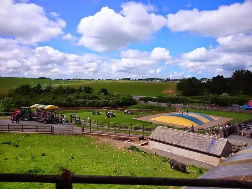 Thumbnail for Foel Farm Park