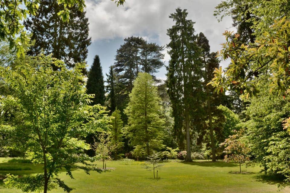 Arley Arboretum and Gardens