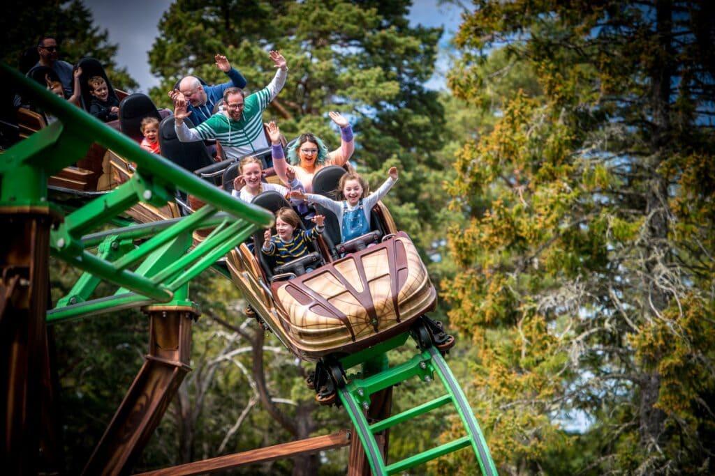 Thumbnail for Landmark Forest Adventure Park