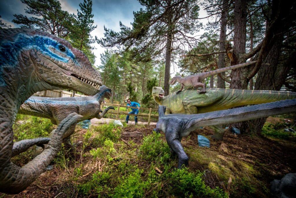Landmark Forest Adventure Park