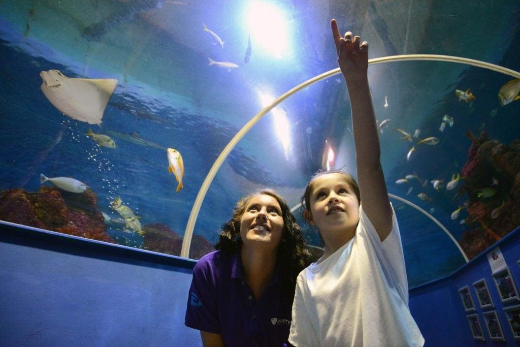 Featured image for Hastings Aquarium