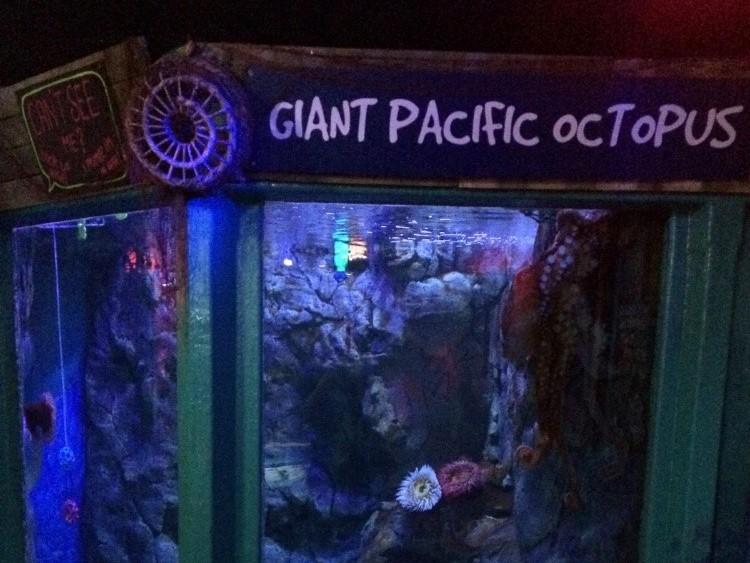 Hastings Aquarium
