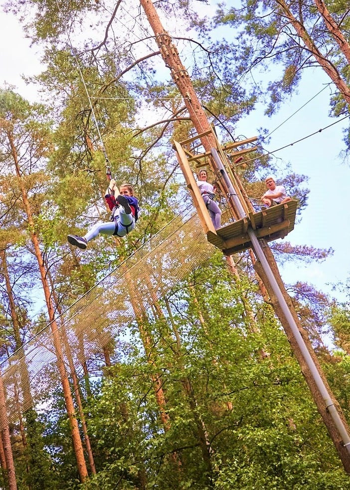 Featured image for Go Ape Dalby Forest