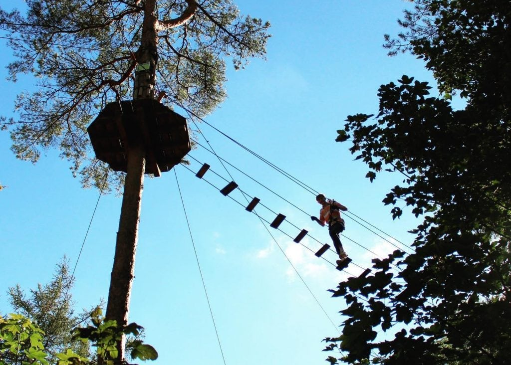 Featured image for Go Ape Wendover Woods