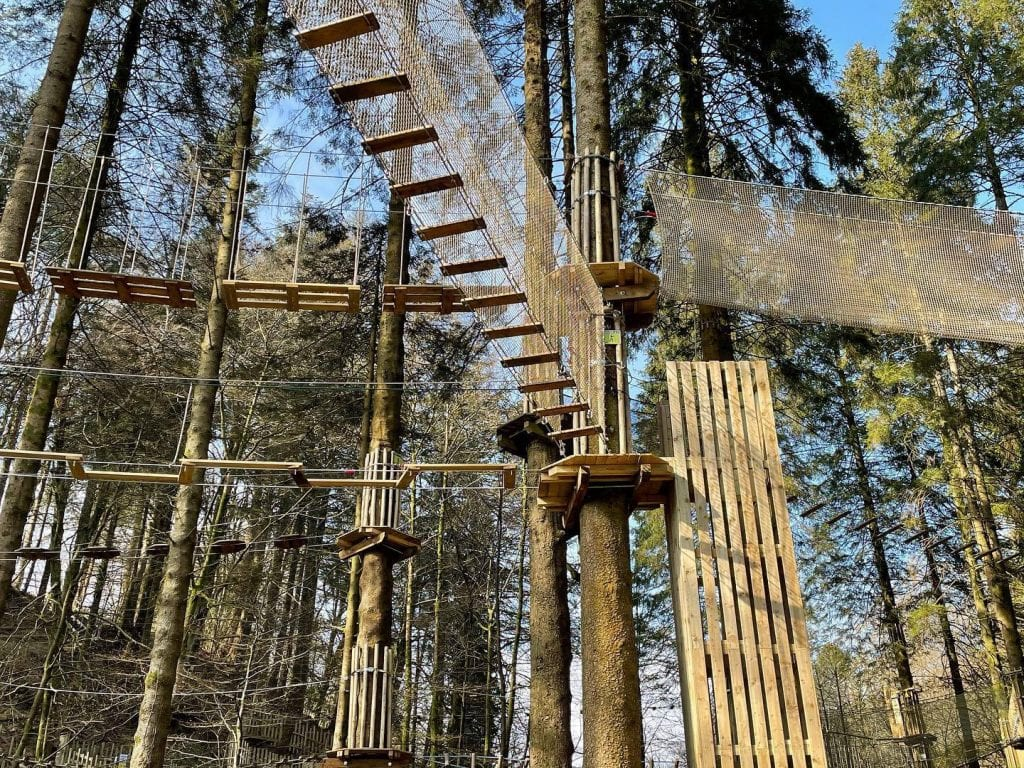 Featured image for Go Ape Grizedale
