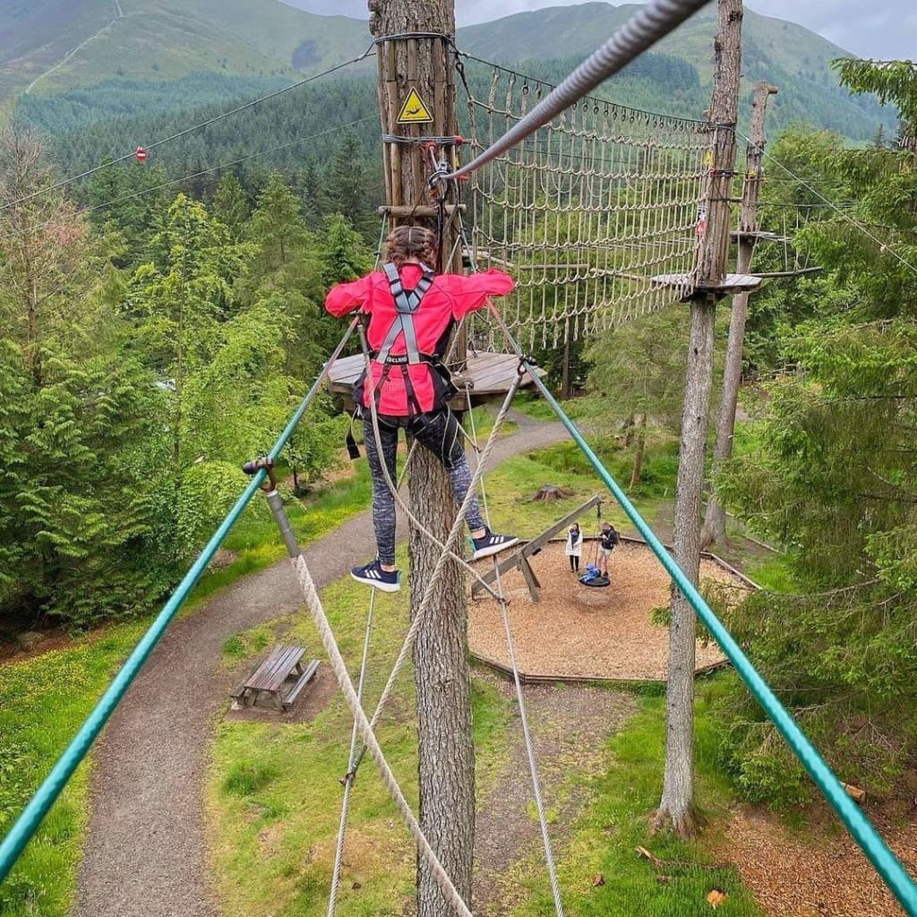 Featured image for Go Ape Whinlatter