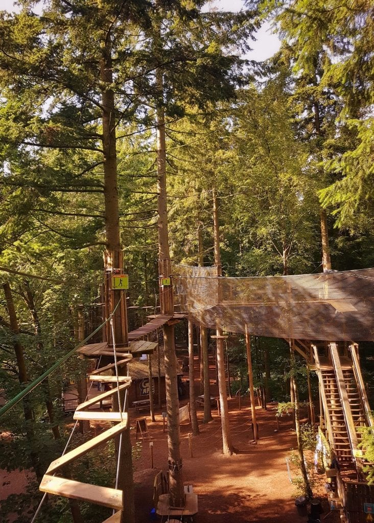 Featured image for Go Ape Wyre Forest