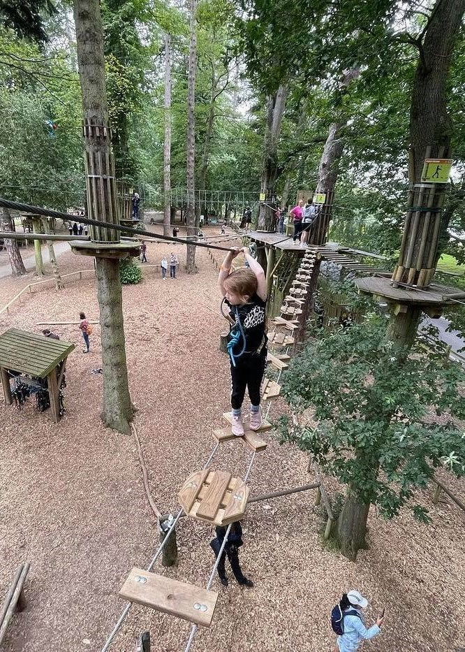 Featured image for Go Ape Crawley
