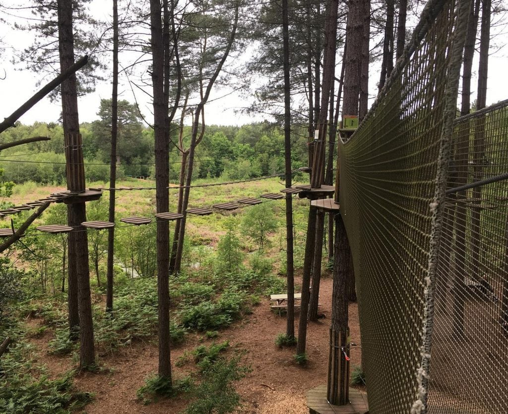 Go Ape Delamere Forest