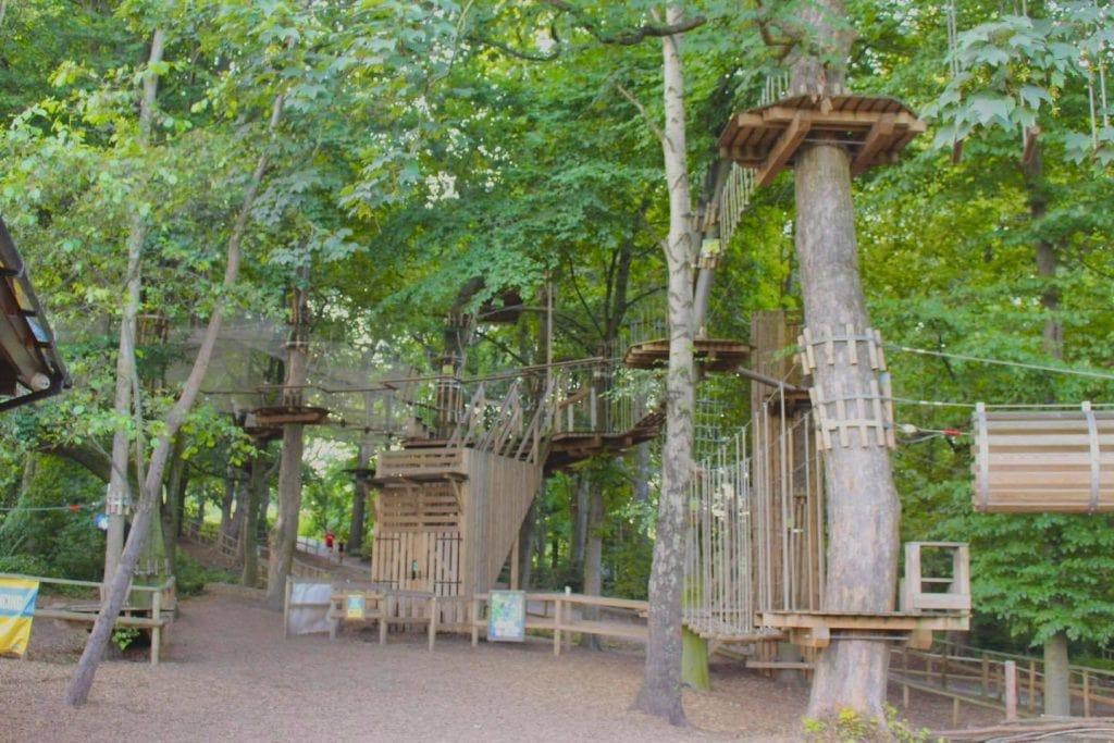 Featured image for Go Ape Temple Newsam Leeds