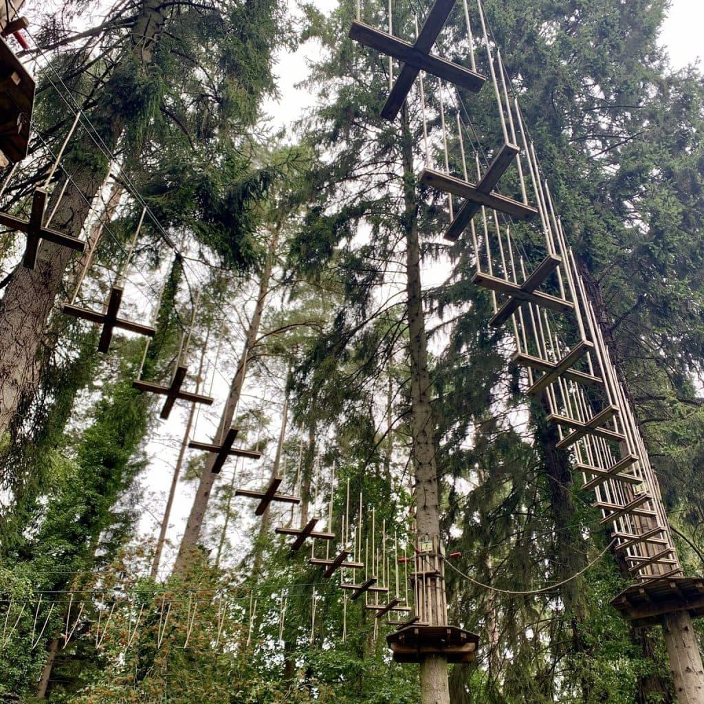 Go Ape Forest of Dean Beechenhurst