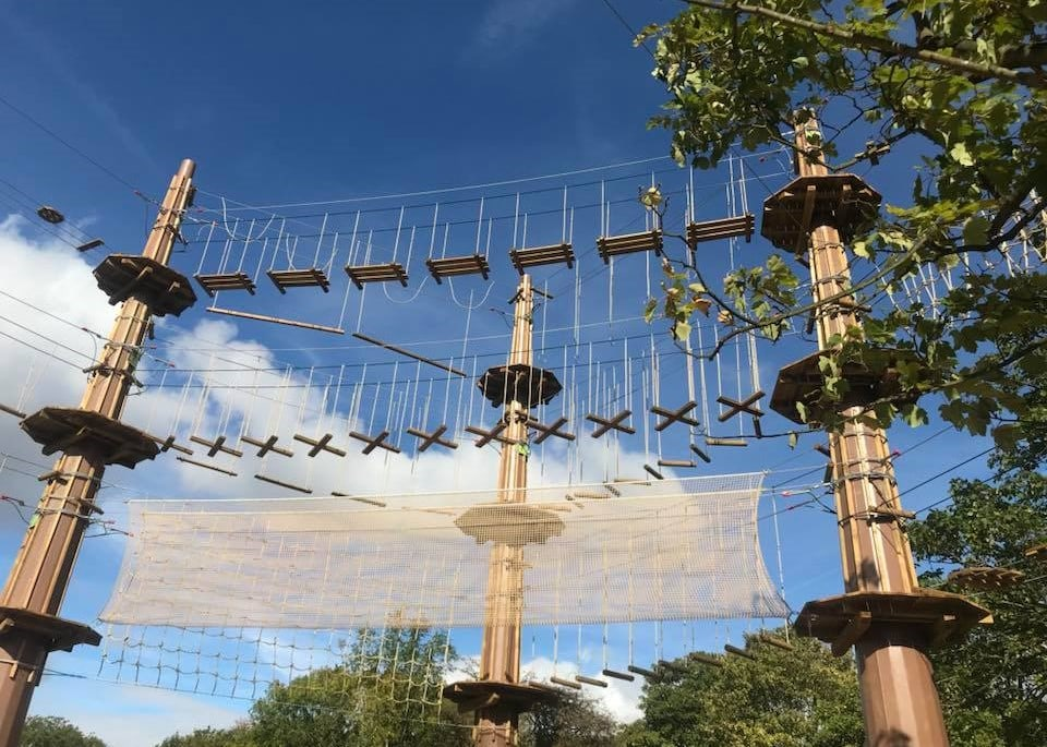 Featured image for Go Ape Alexandra Palace