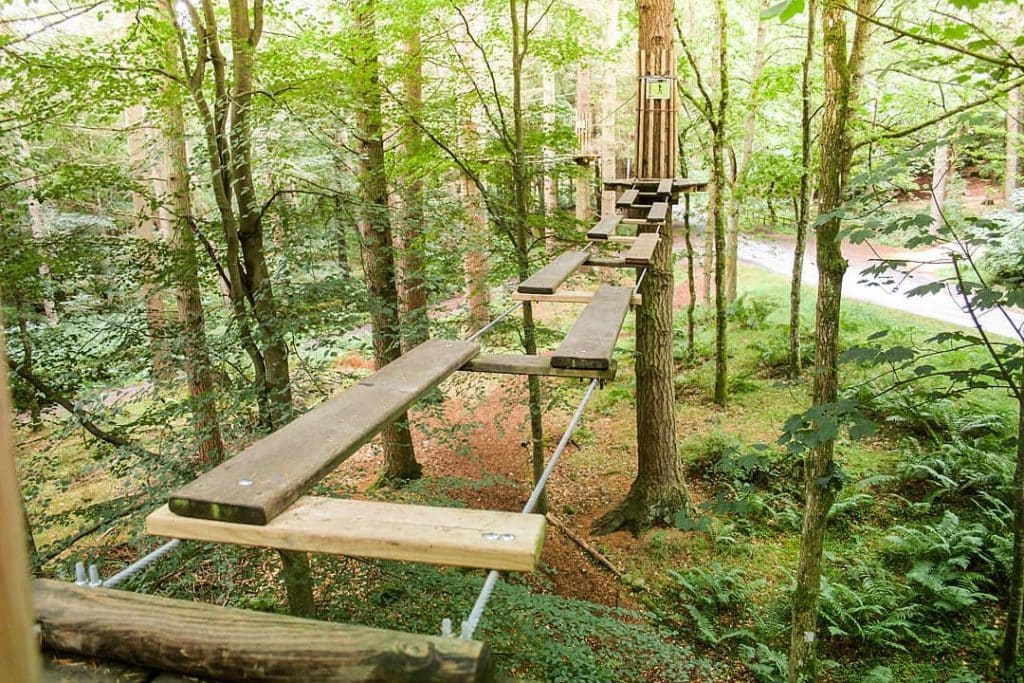 Featured image for Go Ape Aberdeen