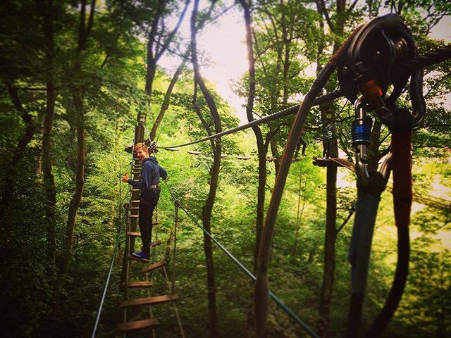 Featured image for Go Ape Buxton