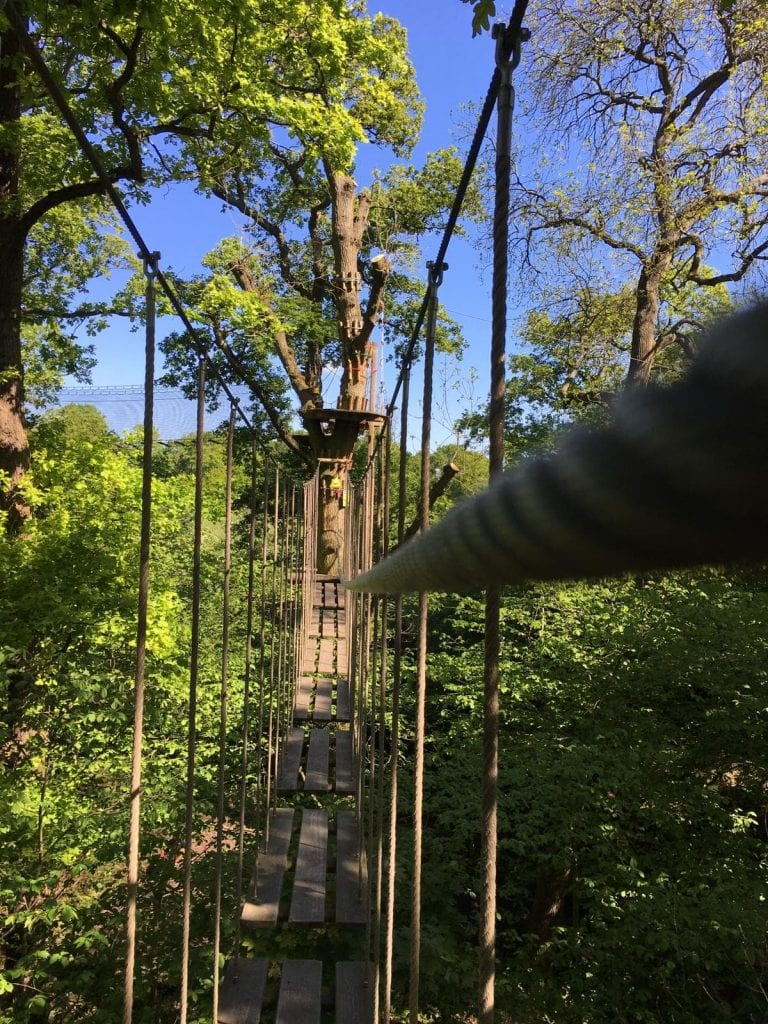 Featured image for Go Ape Cockfosters