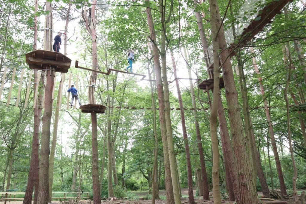 Featured image for Go Ape Coventry