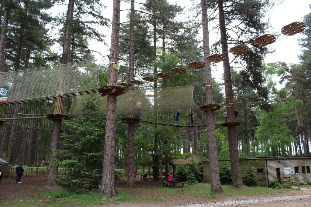 Featured image for Go Ape Sherwood
