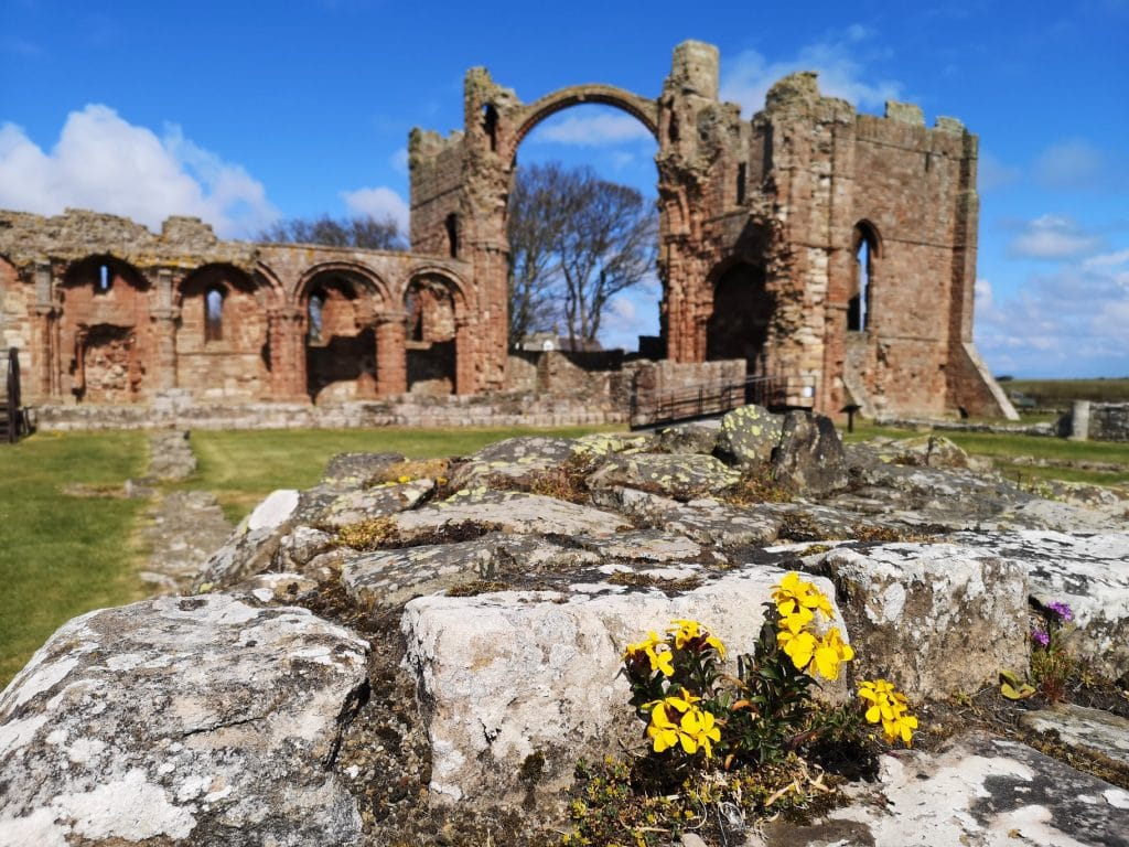 Featured image for Lindisfarne Priory